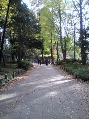 2010-11-12 002.jpg